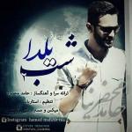دانلود آهنگ شب یلدا 1 و 2 حامد محضر نیا