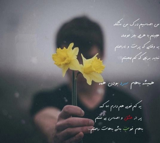دانلود آهنگ من احساسی ام درک من مشکله شهریار ابراهیمی