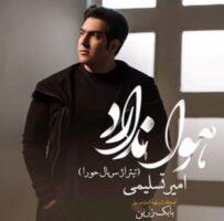 دانلود آهنگ تیتراژ پایانی سریال حورا امیر تسلیمی
